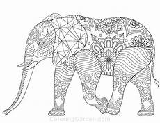indian elephant coloring pages 2390809