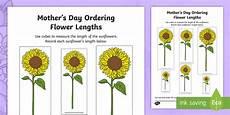 plants measurement worksheets 13586 s day ordering flower lengths worksheet worksheet s day