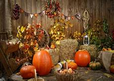 9x6ft 7x5ft 5x3ft F64171 Pumpkin by 10x8ft Thanksgiving Autumn Hay Pumpkins Rustic Photo