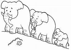 Malvorlage Kleiner Elefant Ausmalbilder Elefanten 17 Ausmalbilder Tiere