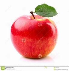 Malvorlage Apfel Mit Blatt Reifer Apfel Mit Blatt Stockbild Bild Nachricht