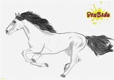 Malvorlagen Pferde Zum Ausdrucken Ausmalbilder Kostenlos Pferde Bilder Zum Ausmalen Bekommen
