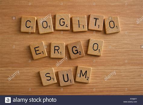 Cogito Ergo Sum In English