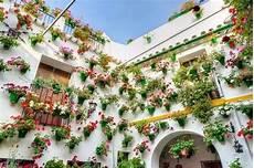 fiori invernali per balconi fiori per balconi fiorista fiori per balconi fiori