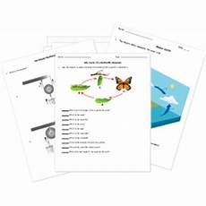printable seventh grade grade 7 tests worksheets and activities