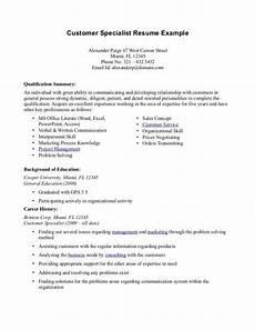 professional summary resume exles customer service