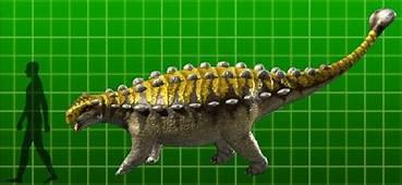 Pinacosaurus  Dinosaur King FANDOM Powered By Wikia