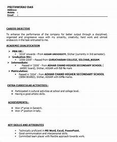 45 fresher resume templates pdf doc free premium templates