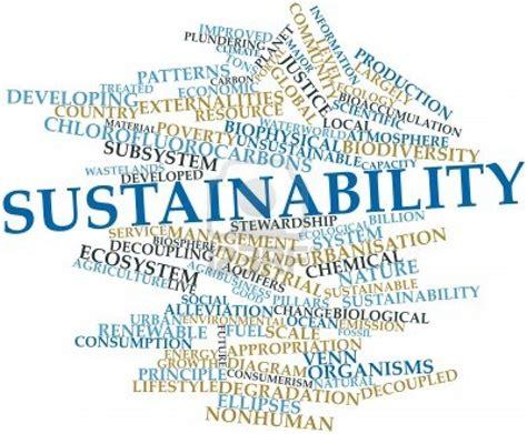 Define Unsustainable