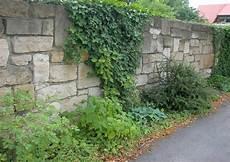bepflanzung vor einer mauer gartenmauer bauen materialien