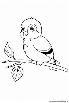 malvorlage vogel auf einem ast