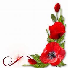 bordure en fleur bordures coins papier papier 224 lettre et coquelicots