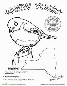 animal coloring pages for 1st grade 17301 new york state bird new york state grade science bird coloring pages new york