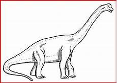 ausmalbilder dinosaurier langhals kostenlose malvorlagen