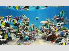 Sim Aquarium Live Wallpaper   My Desktop   YouTube