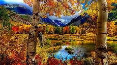 Fall Backgrounds Computer