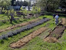 fare l orto in giardino angolo di orto giardino hpi inorto guida all orto fai
