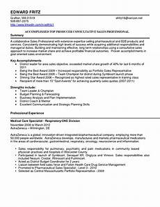 resume sumary sles for sales account manager resume template ipasphoto