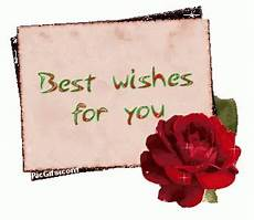 best wishes for best wishes gifs tenor
