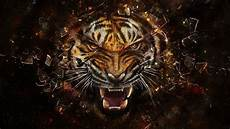 Animals Wallpapers Cool Animals
