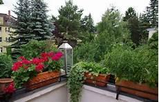 ganzjahresbepflanzung für balkonkästen balkongestaltung mit pflanzen hilfreiche tipps und beispiele
