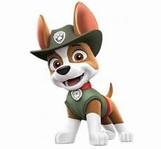 Paw Patrol Malvorlagen Tracker Tracker Paw Patrol Wiki Fandom Powered By Wikia