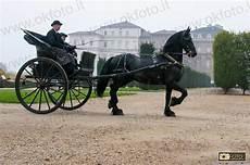 cavallo con carrozza carrozze e cavalli da fiaba alla reggia di venaria