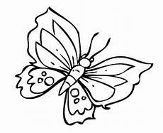 Malvorlagen Schmetterlinge Kostenlos Ausmalbild Natur Toller Schmetterling Kostenlos Ausdrucken