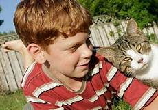 die beliebtesten haustiere wissen 252 ber haustiere meine katze