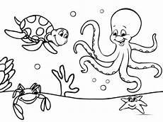 14 Gambar Mewarnai Binatang Laut Anak Tk Paud Dan Sd