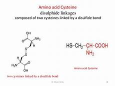 2 amino acids and proteins lecture 2
