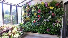 To Plant Vertical Garden by Plants On Walls Vertical Garden Systems Atrium Garden