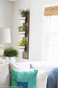 brighten your day with farmhouse plant decor ideas and