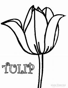 printable tulip coloring pages for