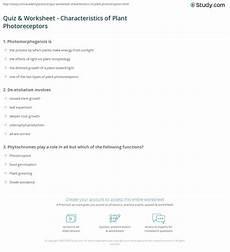 quiz worksheet characteristics of plant photoreceptors study com