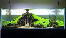 Top Info 33 Pemandangan Air Terjun Aquascape