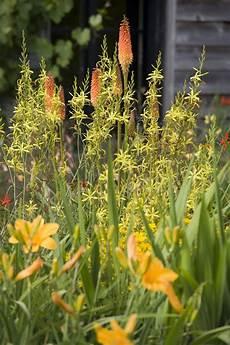 Au Jardin Traitements Et Insecticides Naturels