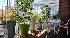 terrazzo in fiore il terrazzino fiorito una mano alla vita onlus