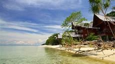 Lankayan Island Living Next To Turtles And Sharks