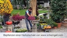 Blumenkübel Winterfest Machen - scherngell g 228 rtnereitipp bepflanzen einer herbstschale