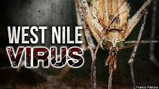 Iowa Reports 2016 S 1st Confirmed Human Cases Of West Nile