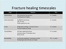 thumb avulsion fracture healing time