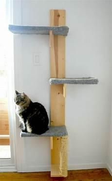 diy projekt f 252 r katzenliebhaber einen katzenbaum selber bauen