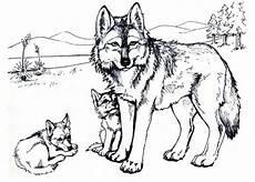Malvorlagen Wolf Ausdrucken Ausmalbilder Wolf Free Ausmalbilder