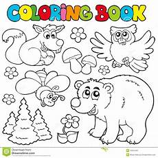 coloring pages animals in the forest 17029 coloring book with forest animals 1 stock vector illustration of environment illustration