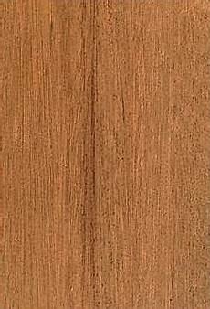 Holzarten Für Außenbereich - auf der suche nach geeigneten holzarten f 252 r den
