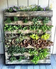 potager vertical balcon 7 id 233 es pour r 233 aliser un potager vertical jardin herb