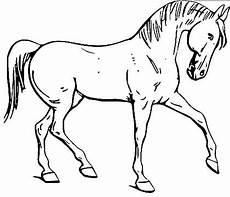 dressur pferd malvorlage anmutiges pferd ausmalbild