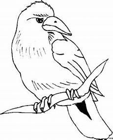 sitzender vogel auf einem ast ausmalbild malvorlage tiere