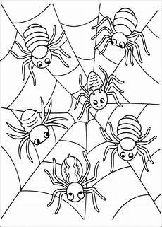 Ausmalbilder Malvorlagen Spinnen Ausmalbilder Malvorlagen Spinnen Aiquruguay